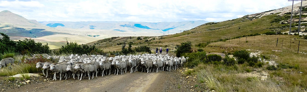Lesotho Eastern Cape Traffic Jam